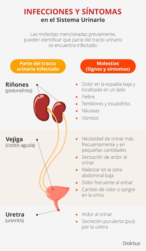 Infección del tracto urinario (ITU)|| Doktuz
